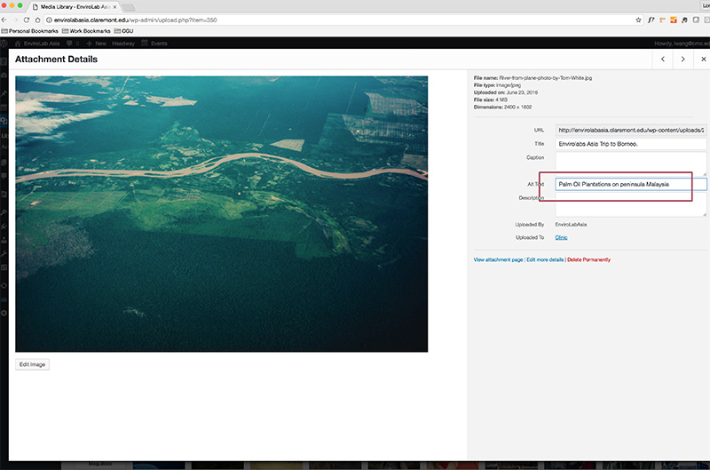 Shows image being edited in Wordpress Media Library