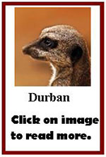 Click on image to read more about Durban