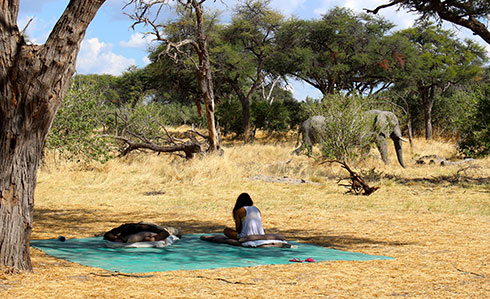 Lauren and Elephant in Botswana