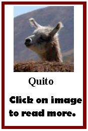 Click on image to read more about Quito