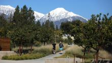 """""""The view of a snowy Mt. Baldy on a sunny day,"""" was among the many reasons to love CMC"""